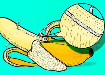"""Không nên bỏ """"Những sợi dây"""" tơ nhỏ khi ăn chuối"""