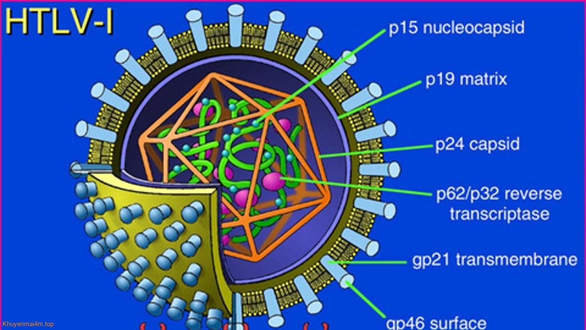 virut