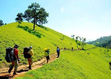 Thực hiện lắp bảng chỉ dẫn trên cung trekking Tà Năng – Phan Dũng