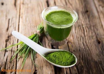 Tảo Spirulina – Thực phẩm xanh cho hiệu quả giảm cân