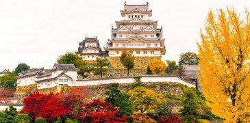Kinh nghiệm du lịch Nhật Bản cùng trẻ nhỏ