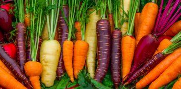 Cà rốt và những lợi ích tuyệt vời với sức khỏe